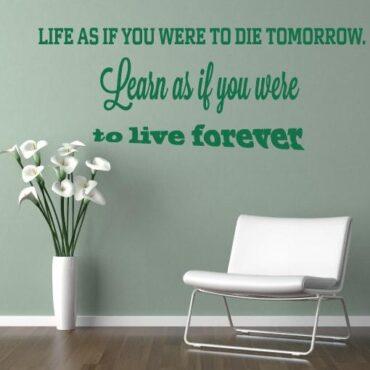 Primer izgleda zelene samolepilne stenske nalepke Life as if you were to die tomorrow na zeleni steni. Nalepka je napis, ki se glasi: Life as if you were to die tomorrow. Learn as if you were to live forever.