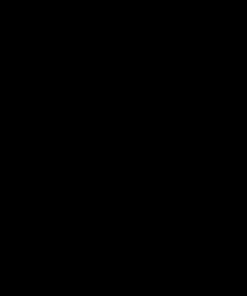 Outlet stenska nalepka Bless this home 150 x 56cm črne barve po akcijski ceni