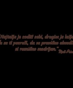 Outlet stenska nalepka Mali Princ Citat – Najtežje je soditi sebi rjave barve za dnevno sobo ali spalnico.